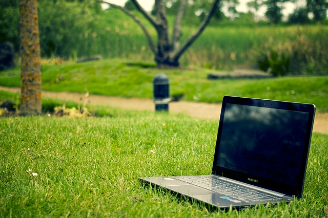 Laptop in a park
